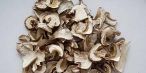 Лечебные свойства грибов лисичек. Их употребление от паразитов