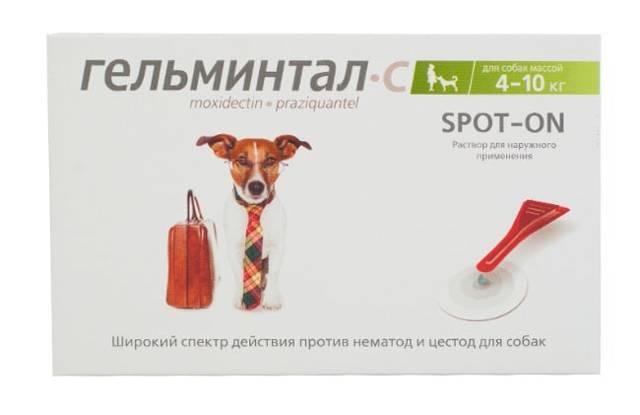 Лучшие препараты от глистов для собак и щенков