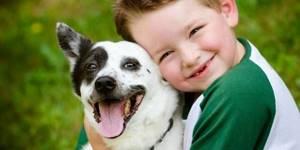 Токсокароз у детей: заражение, признаки и лечение