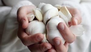 Способ избавиться от глистов при помощи чеснока: метод Чингисхана