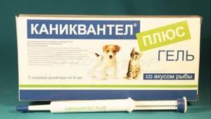Каниквантел плюс XL от глистов для собак. Инструкция и цена