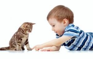 Препарат Макмирор. Инструкция для детского применения. Отзывы