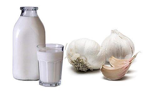 Молоко с чесноком как средство борьбы с глистами у детей. Рецепты и отзывы