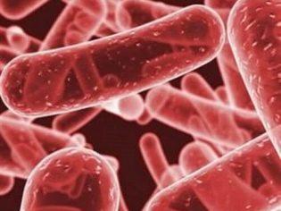 Клебсиелла пневмония у грудничков: признаки, пути инфицирования и лечение
