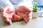 Лечение от паразитов противовирусными препаратами - советы врачей на каждый день