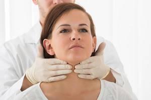 Выпадает шерсть очень долгое время - советы врачей на каждый день