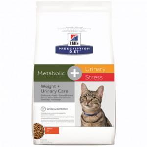 Как лечить живот у кошки - советы врачей на каждый день