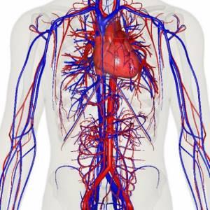 Головная боль, скачки давления - советы врачей на каждый день