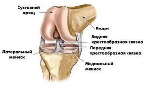 Боль в колене у ребенка - советы врачей на каждый день