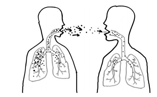 Туберкулез под вопросом - советы врачей на каждый день
