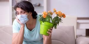 Плохо чувствую запахи. Нос - советы врачей на каждый день