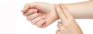 Пустырник и валерьяна - советы врачей на каждый день