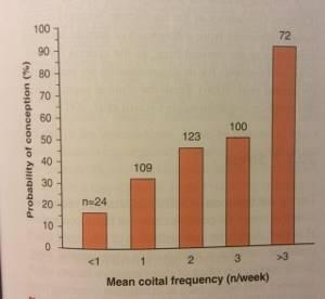 Длительность секса составляет около 20-40 секунд - советы врачей на каждый день