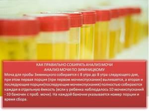 Лейкоциты в моче у девочки - советы врачей на каждый день