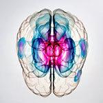 Свист в голове - советы врачей на каждый день